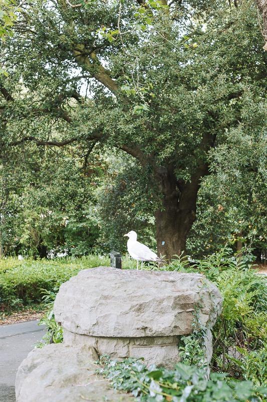 Mejores Parques y Jardines en Dublín